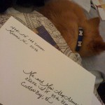 Wedding Invitation Envelope - Calligraphy