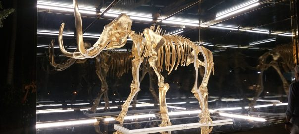 Gone But Not Forgotten: Wooly Mammoth at Faena by Hirst