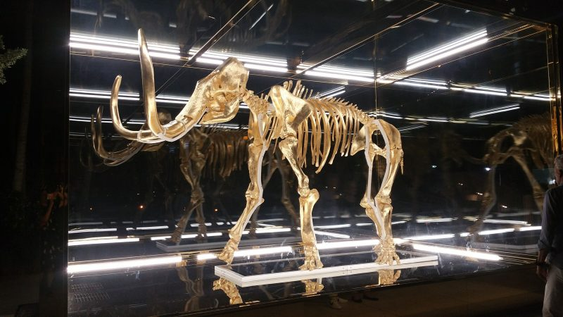 Gone But Not Forgotten: Wooly Mammoth at Faena by Damien Hirst