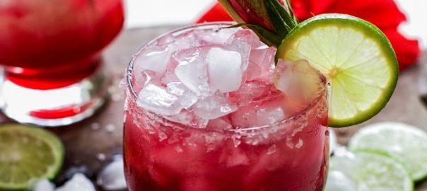 Hibiscus Margarita Recipe   Bubbles & Ink Blog