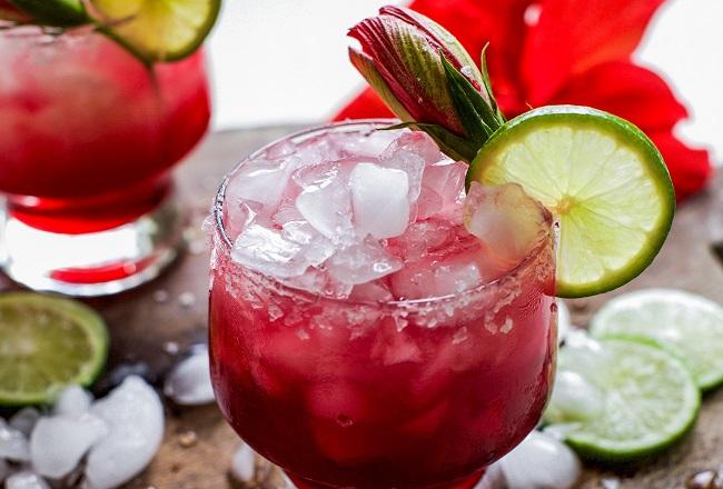 Hibiscus Margarita Recipe | Bubbles & Ink Blog